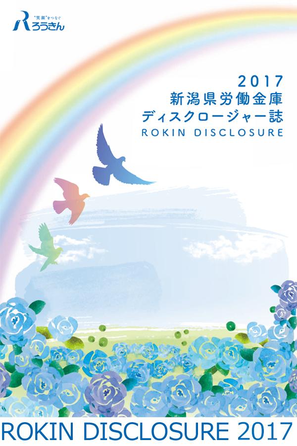ROKIN DISCLOSURE 2017